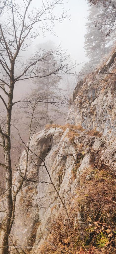 Mariensteig, Aufstieg Krummbachstein, von Reichenau