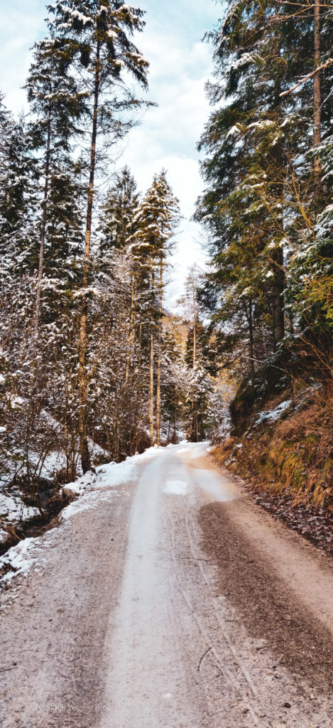 Wanderung, Österreich, Niederösterreich, Enzianhütte, Winter