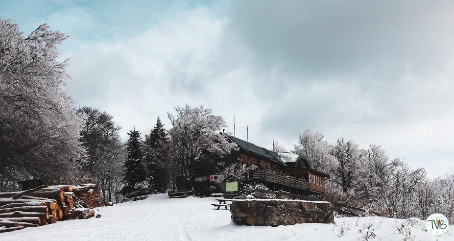 Kieneck – Enzianhütte – Gutensteiner Alpen (NÖ) [1107m]